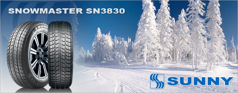 SUNNY SnowMaster SN3830